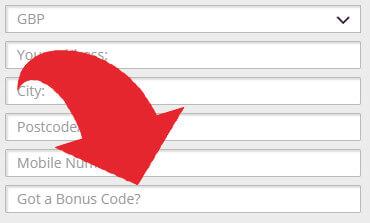 Where to put the bonus code for Karamba